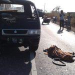 Bertabrakan dengan Pick-Up di Jalingkut , Pengemudi Suzuki Satria Terkapar di Jalan